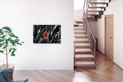 תמונה לבית - ארי בלטינשטר - צבע אדום - מק''ט: 309634