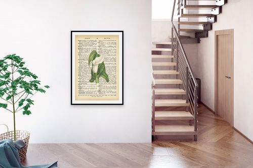 תמונה לבית - Artpicked - פרח לבן ירוק רטרו על טקסט - מק''ט: 330440