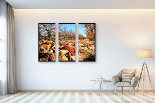 תמונה לבית - ארי בלטינשטר - מטע אפרסמון בשלכת - מק''ט: 102221