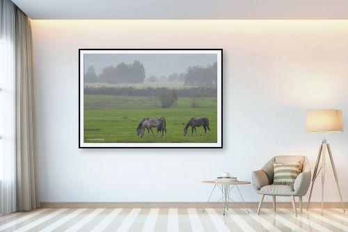 תמונה לבית - קובי פרידמן - סוסים - מק''ט: 107351