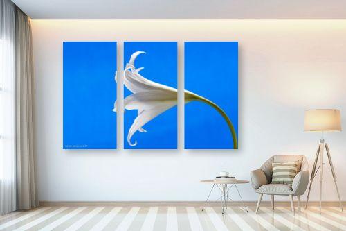 תמונה לבית - שרית סלימן - כחול ולבן - מק''ט: 134515