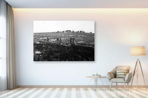 תמונה לבית - דוד לסלו סקלי - כפר עציון 1946 הכשרת קרקע - מק''ט: 144267