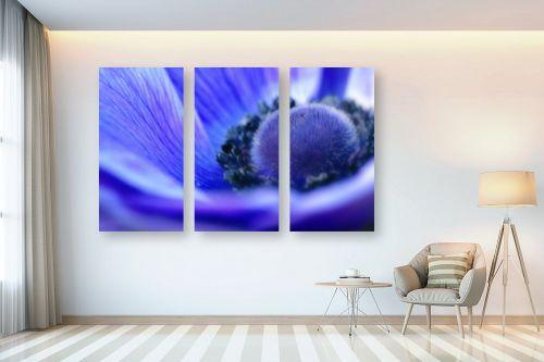 תמונה לבית - איה אפשטיין - anemone - מק''ט: 148938