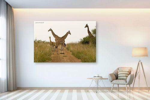 תמונה לבית - שרית סלימן - דוגמניות מאפריקה - מק''ט: 163546