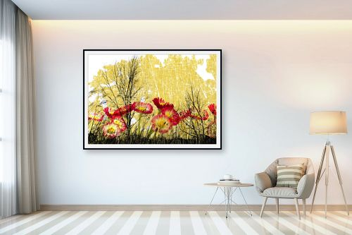 תמונה לבית - רוזה לשצ'ינסקי - יער בערפל - מק''ט: 204267
