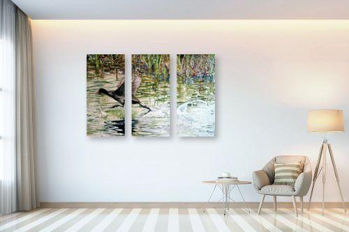 תמונה לבית - חיה וייט - צפור מדלגת על מים זורמים - מק''ט: 213280