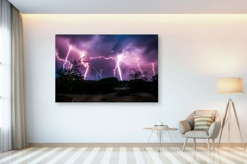 תמונה לבית - עידן גיל - סופת ברקים - מק''ט: 231847