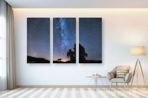 תמונה לבית - מיכאל שמידט - לאורך החומות - מק''ט: 233339