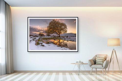 תמונה לבית - מיכאל שמידט - לבן וקסום - מק''ט: 250998