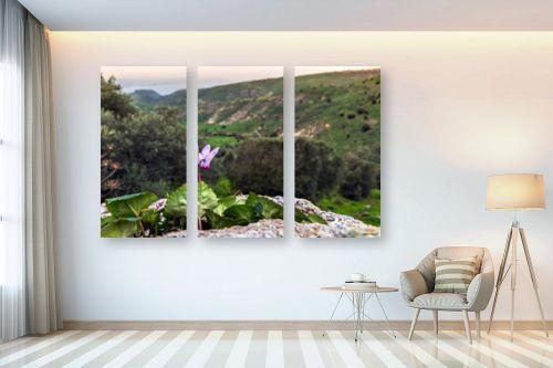 תמונה לבית - מיכאל שמידט - רקפת עם נוף לים - מק''ט: 252516