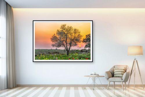 תמונה לבית - מיכאל שמידט - הפשטות של הטבע - מק''ט: 253261