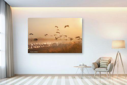 תמונה לבית - איזבלה אלקבץ - עגורים בזריחה - מק''ט: 267097