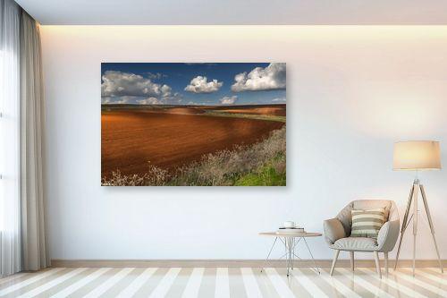 תמונה לבית - מיכאל שמידט - חקלאות ציורית - מק''ט: 278042
