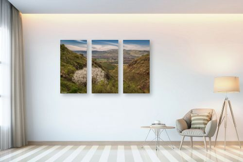 תמונה לבית - מיכאל שמידט - חלון לעמק החולה.. - מק''ט: 280291