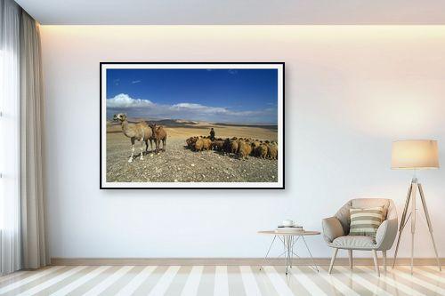 תמונה לבית - אייל ברטוב - עדר במדבר - מק''ט: 297260