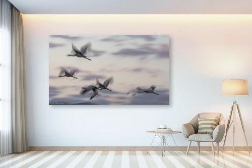 תמונה לבית - דורית ברקוביץ - מעוף העגורים - מק''ט: 298659