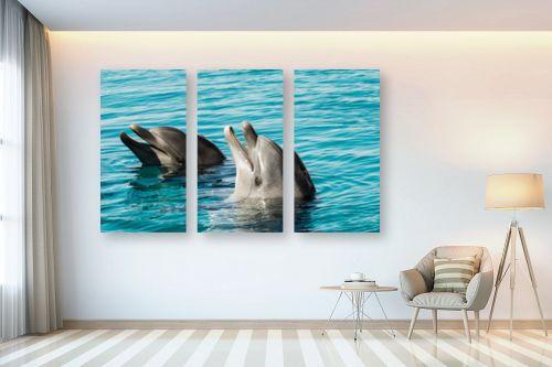 תמונה לבית - טניה קלימנקו - ריף הדולפינים - מק''ט: 302514