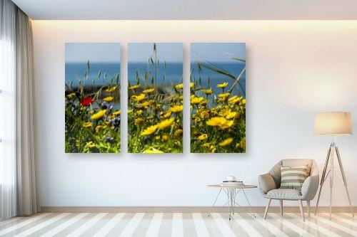 תמונה לבית - שי וייס - ים של פרחים - מק''ט: 303675