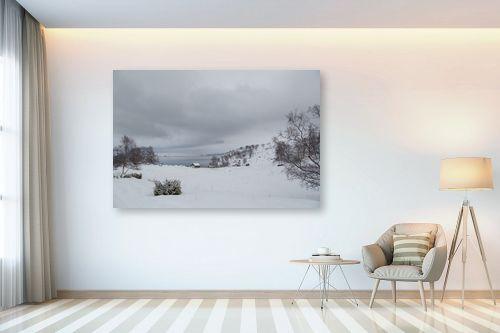 תמונה לבית - מאיר בר-אל - שלג וקרח - מק''ט: 306385