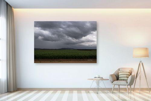 תמונה לבית - אלעד דרור - שדה חיטה ביום גשם - מק''ט: 313046