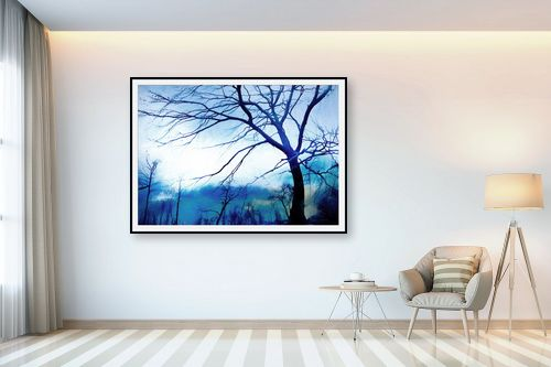 תמונה לבית - גורדון - היער הכחול - מק''ט: 328280