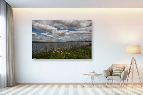 תמונה לבית - אלעד דרור - אגם עונתי - מק''ט: 329830