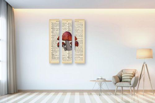 תמונה לבית - Artpicked - 3 פיטריות רטרו על טקסט - מק''ט: 330260