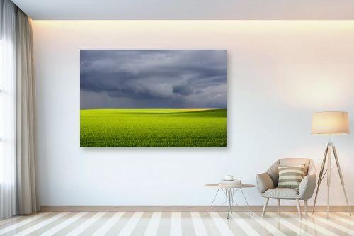 תמונה לבית - רן זיסוביץ - שדה בסערה - מק''ט: 331202