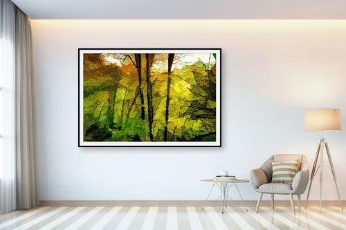 תמונה לבית - אורית גפני - אור ראשון ביער - מק''ט: 331635
