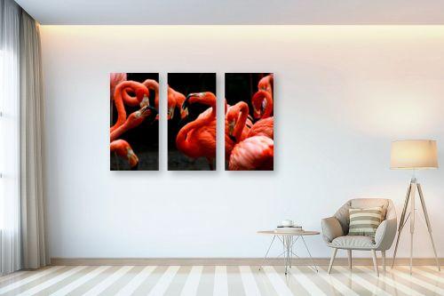 תמונה לבית - Artpicked - להקת פלמינגו - מק''ט: 332048