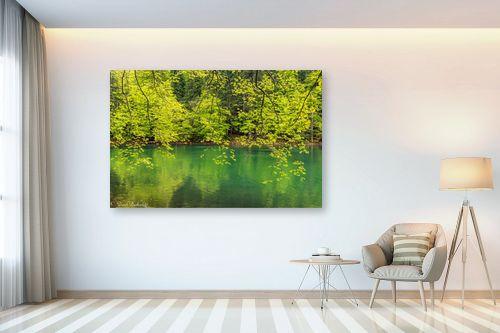 תמונה לבית - דורית ברקוביץ - גוונים של ירוק - מק''ט: 333396