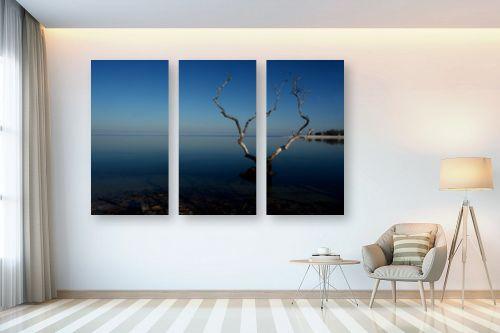 תמונה לבית - אבנר ירון - מפרץ ווטומבה 2 - מק''ט: 335272