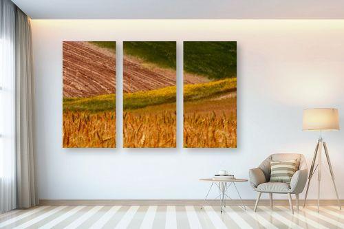 תמונה לבית - אבנר ירון - שדות שקמה - מק''ט: 335490