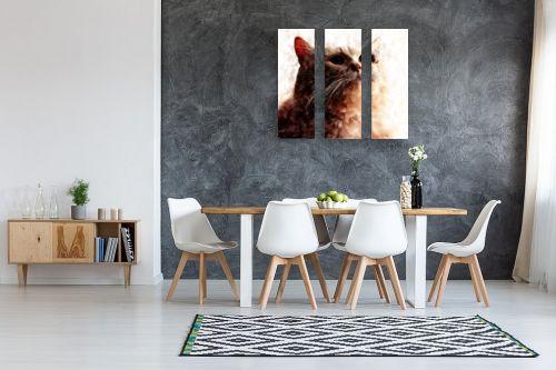 תמונה לבית - Artpicked - חתולי - מק''ט: 329736