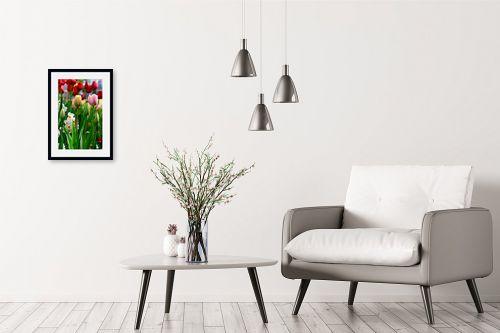 תמונה לבית - אורית גפני - פרחים מהודרים - מק''ט: 270478