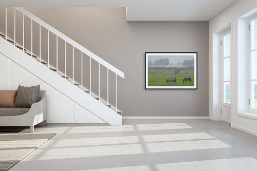 תמונה לחדר מדרגות - קובי פרידמן - סוסים - מק''ט: 107351
