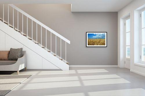 תמונה לחדר מדרגות - שוש אבן - שדה חיטה - מק''ט: 120710