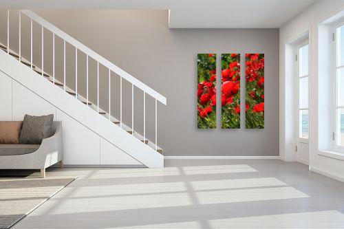 תמונה לחדר מדרגות - ארי בלטינשטר - פרגים 1 - מק''ט: 128049