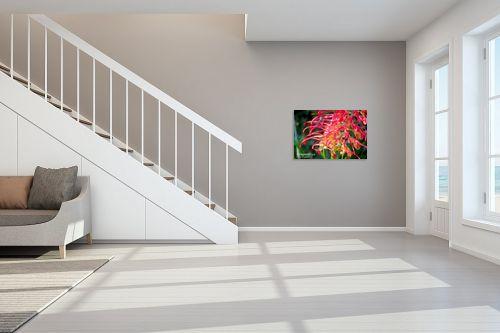 תמונה לחדר מדרגות - איה אפשטיין - דבורה על פרח - מק''ט: 12838