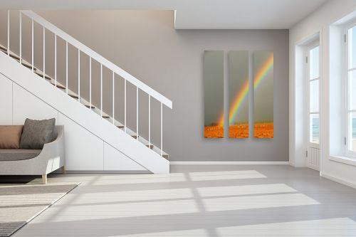 תמונה לחדר מדרגות - אייל הצפון - קשת בשדה - מק''ט: 141442
