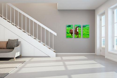 תמונה לחדר מדרגות - אילן עמיחי - בדהירה - מק''ט: 168150