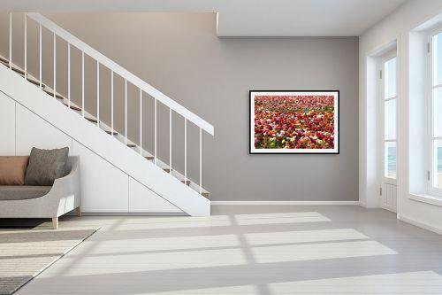 תמונה לחדר מדרגות - שרית סלימן - פרחים פרחים - מק''ט: 187456