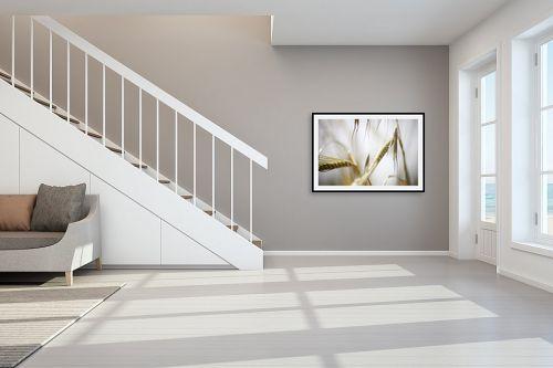 תמונה לחדר מדרגות - איה אפשטיין - שיבולים - מק''ט: 201939