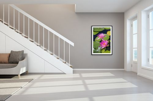 תמונה לחדר מדרגות - ארי בלטינשטר - נופרים בסגול - מק''ט: 213776