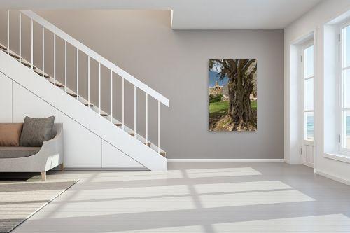 תמונה לחדר מדרגות - מיכאל שמידט - שורשי דוד המלך - מק''ט: 258796