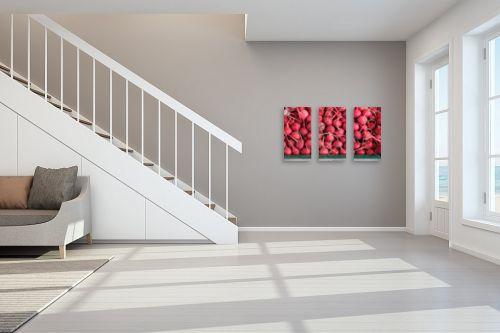 תמונה לחדר מדרגות - דן ששתיאל - צנוניות - מק''ט: 258841