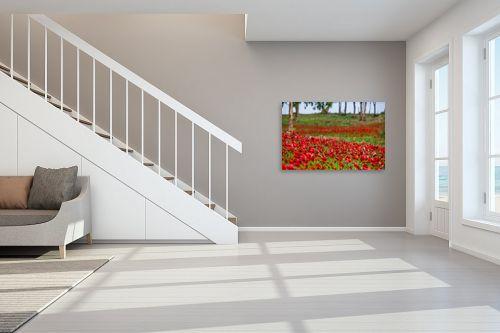 תמונה לחדר מדרגות - דורית ברקוביץ - מרבד אדום - מק''ט: 261224