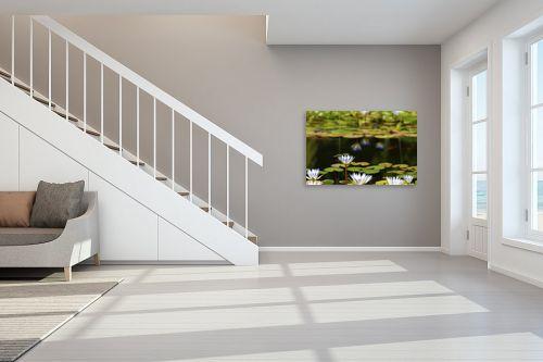 תמונה לחדר מדרגות - אורלי גור - נופרים 4 - מק''ט: 279169