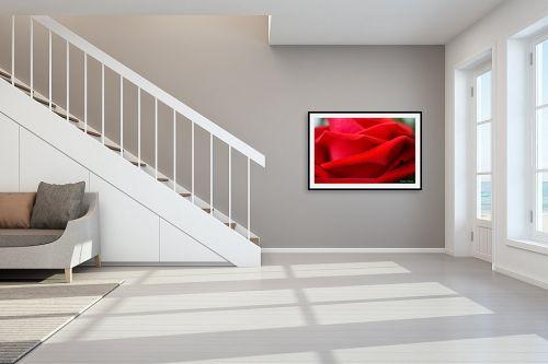 תמונה לחדר מדרגות - איזבלה אלקבץ - ורד - מק''ט: 279655