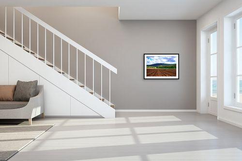 תמונה לחדר מדרגות - שי וייס - שדות עמק יזרעאל - מק''ט: 281469